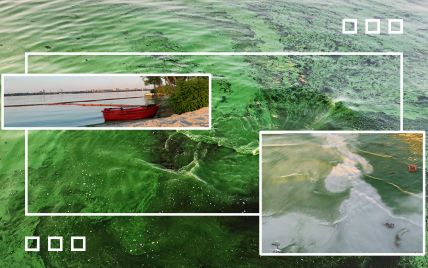 Экологическая катастрофа в Днепре: что происходит с главной водной артерией города (видео)