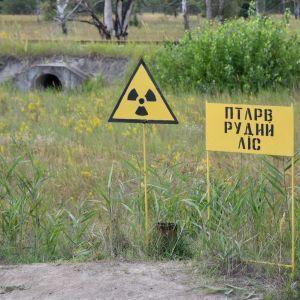 У співробітника Чорнобильської АЕС підтвердили коронавірус