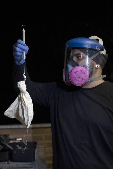 В десятки раз смертельнее чем COVID-19: что такое вирус Nipah и почему ВОЗ боится новой пандемии