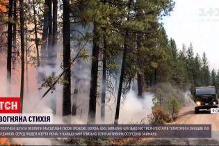 Новини світу: у Сполучених Штатах полум'я вже знищило більше 160 тисяч гектарів насаджень