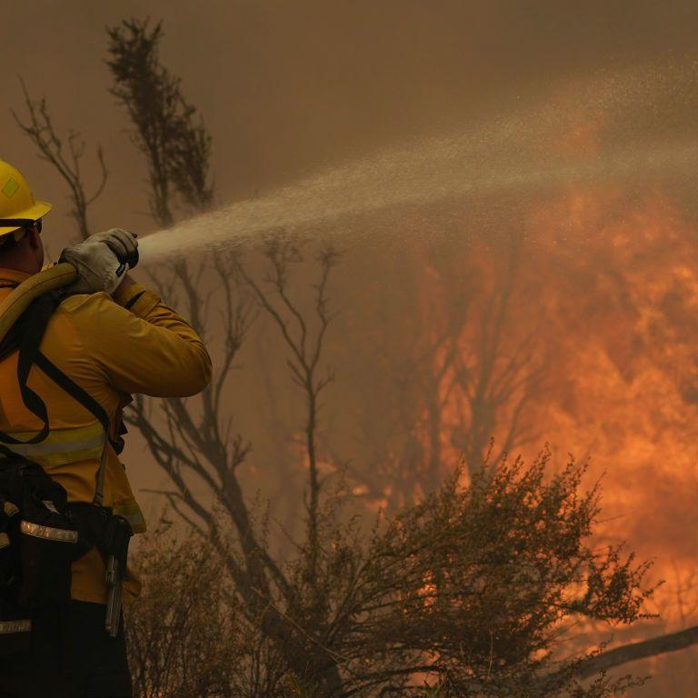 США страдают от аномальных температур: из-за засухи вспыхнули лесные пожары