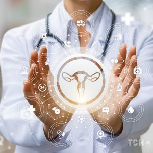 Жіноча репродуктивна система: що потрібно знати про будову і функції статевих органів