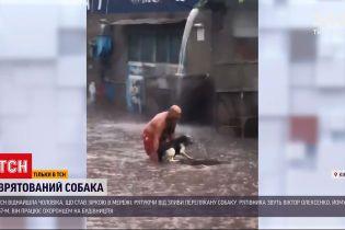 Новости Украины: мужчина спас испуганного пса от непогоды