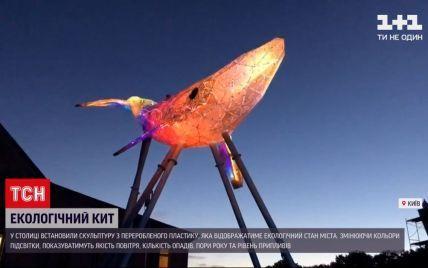 У Києві з'явилася скульптура кита зі сміття: як її створювали