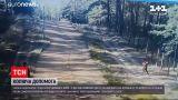 Новости мира: Украина предоставит Литве колючую проволоку в качестве гуманитарной помощи