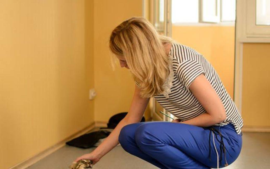 Посетителям заведения будут позволять играть с котиками / © facebook.com/kotokafelapa