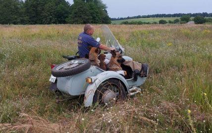 В Черкасской области мужчина ежедневно возит собак мотоциклом на прогулки