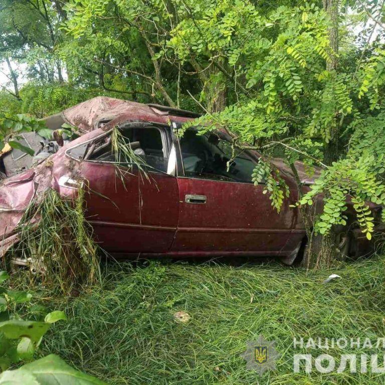 В Николаевской области Toyota врезалась в дерево: не выжил никто