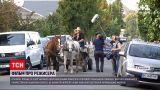 Новости мира: в Италии, Польше и Украине снимают фильм о польского режиссера Кшиштофа Заннуси