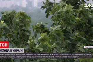 Погода в Украине: синоптики прогнозируют дожди с грозами в большинстве регионов