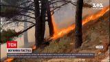 Новости мира: в Испании объявили массовую эвакуацию из-за лесных пожаров
