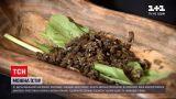 Новости Украины: сушеные пчелы и сорняки – какие на вкус блюда со странными ингредиентами
