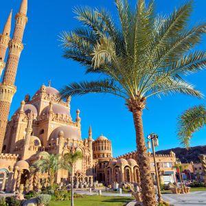 В Египте отменят ограничения на работу ресторанов и магазинов: дата