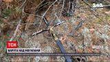 Новости Украины: в Ровенской области неизвестные надругались над могилами