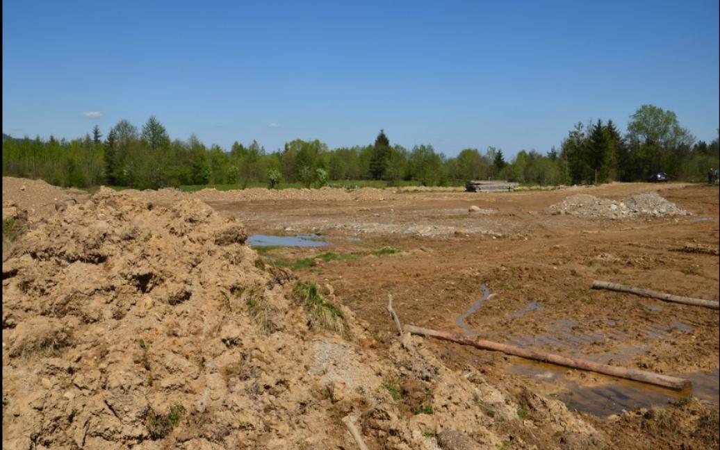 Екології району завдали серйозних збитків / © twitter/СБУ