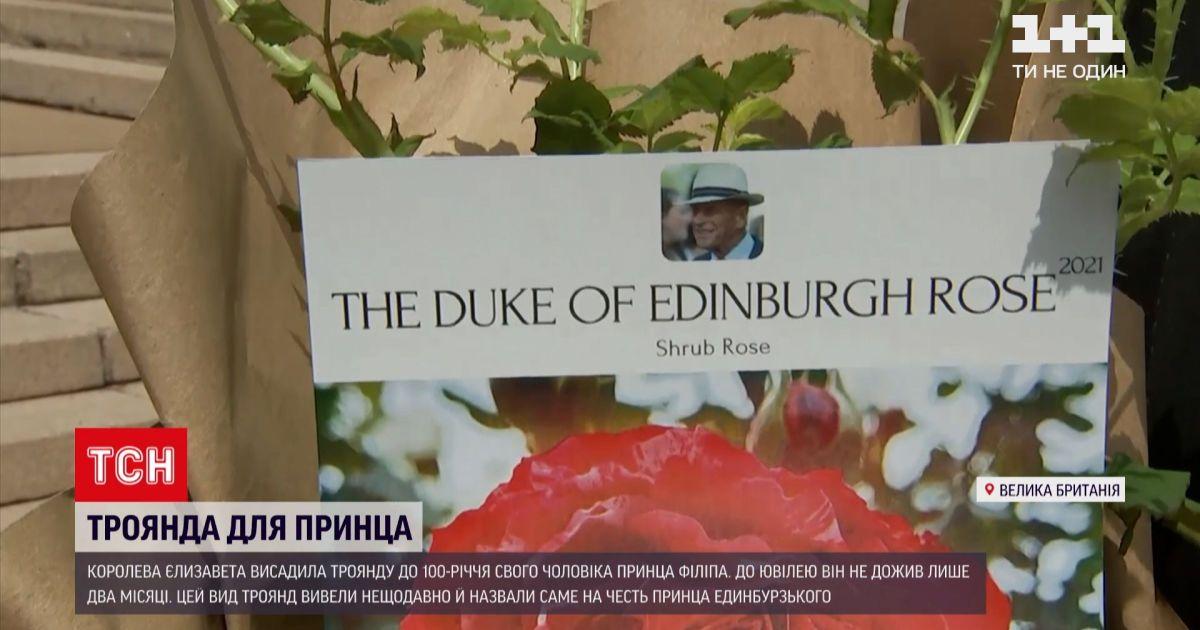 Новости мира: Елизавета II высадила розу в память о своем муже