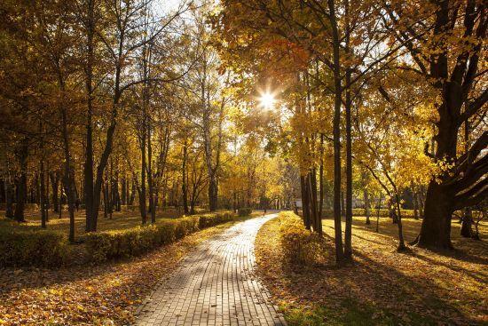 Солнечно и тепло: жителей каких регионов порадует погода в Украине 27 сентября