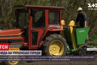 Новости Украины: тренд или необходимость - почему украинцы каждую весну обрабатывают огороды и сажают грядки