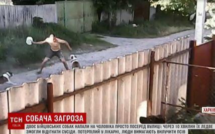 На Харківщині кілька пітбулів пошматували випадкового перехожого на вулиці