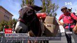 Новости мира: женщина из Франции более года ходит миром пешком с ослом и собакой