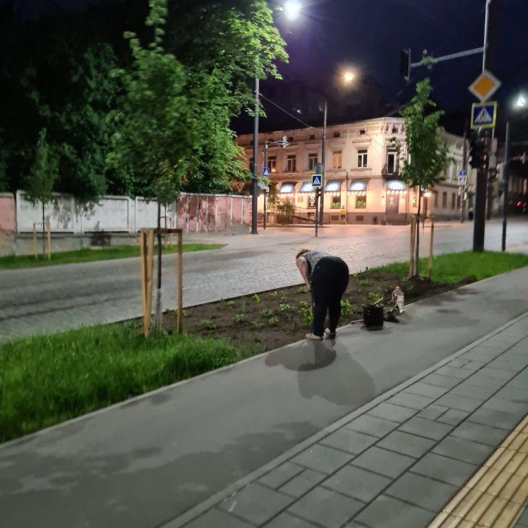 Росла трава після ремонту: в Львові жінка посеред ночі самовільно перекопала газон та посадила там квіти