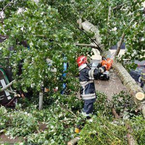 В Киевской области из-за урагана погибли два человека