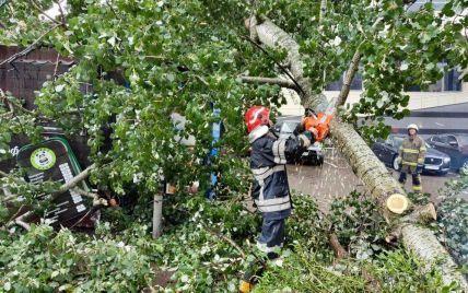У Київській області через буревій загинули дві людини