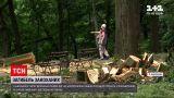 Новости Украины: пара влюбленных погибла, когда на них упало дерево в парке