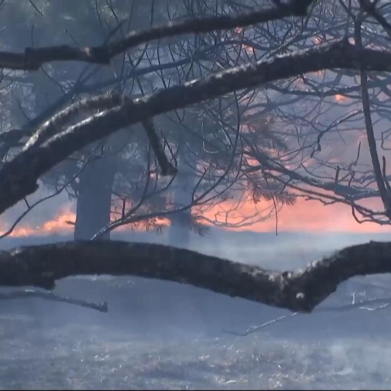 Время от времени взрываются мины: новый масштабный пожар вспыхнул вблизи фронта в Луганской области