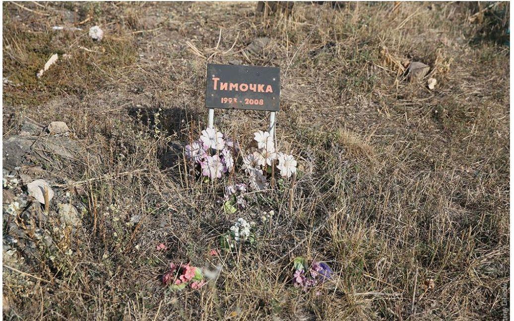 Лебедев позорно высмеял кладбище / © tema.livejournal.com
