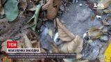 Новини України: у Кривому Розі посеред вулиці знешкодили калюжу ртуті