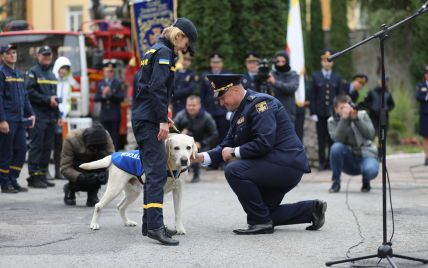 """""""Бім, твоя місія виконана"""": у Тернополі з урочистостями відправили на пенсію собаку (фото)"""