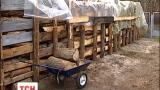 На альтернативне паливо переводять санаторії в Києві