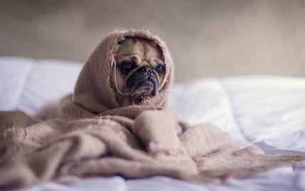 В КГГА рассказали, когда в квартирах появится отопление