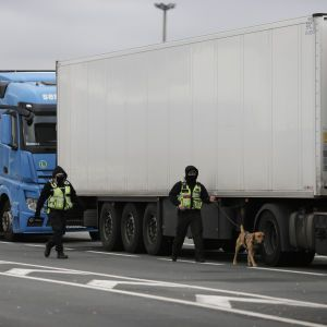 Після Brexit нідерландські митники відбирають бутерброди у британських водіїв