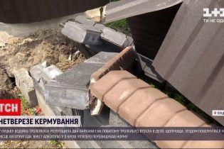 Новости Украины: в Луцке водительница троллейбуса навеселе разгромила два забора