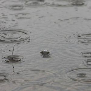Погода в Киеве: в столицу идет похолодание с обильными дождями
