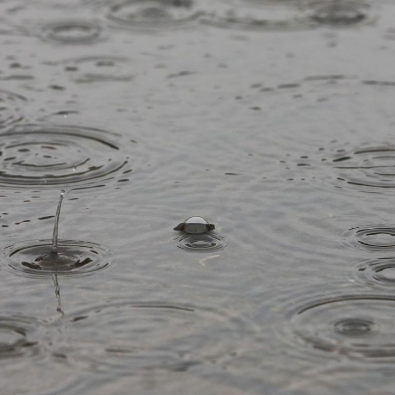 Непогода не утихает: улицы Полтавы превратились в реки