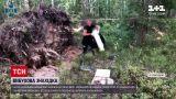 Новини України: у Рівненській області СБУ знайшла сховок із боєприпасами