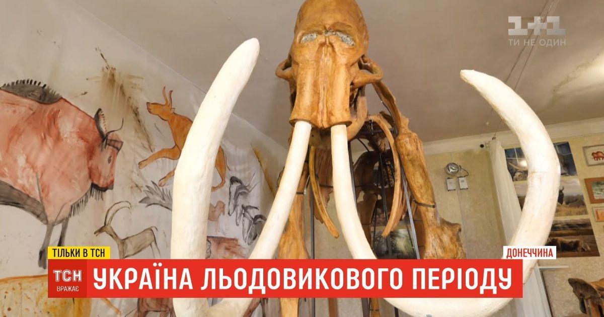 Україна льодовикового періоду: чи є надія, що біля унікальної Старуні розпочнуть розкопки