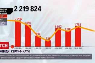 Коронавірус в Україні: за минулу добу нарахували понад 1700 нових хворих