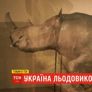 Україна льодовикового періоду: де нині зберігаються сенсаційні знахідки із Прикарпаття