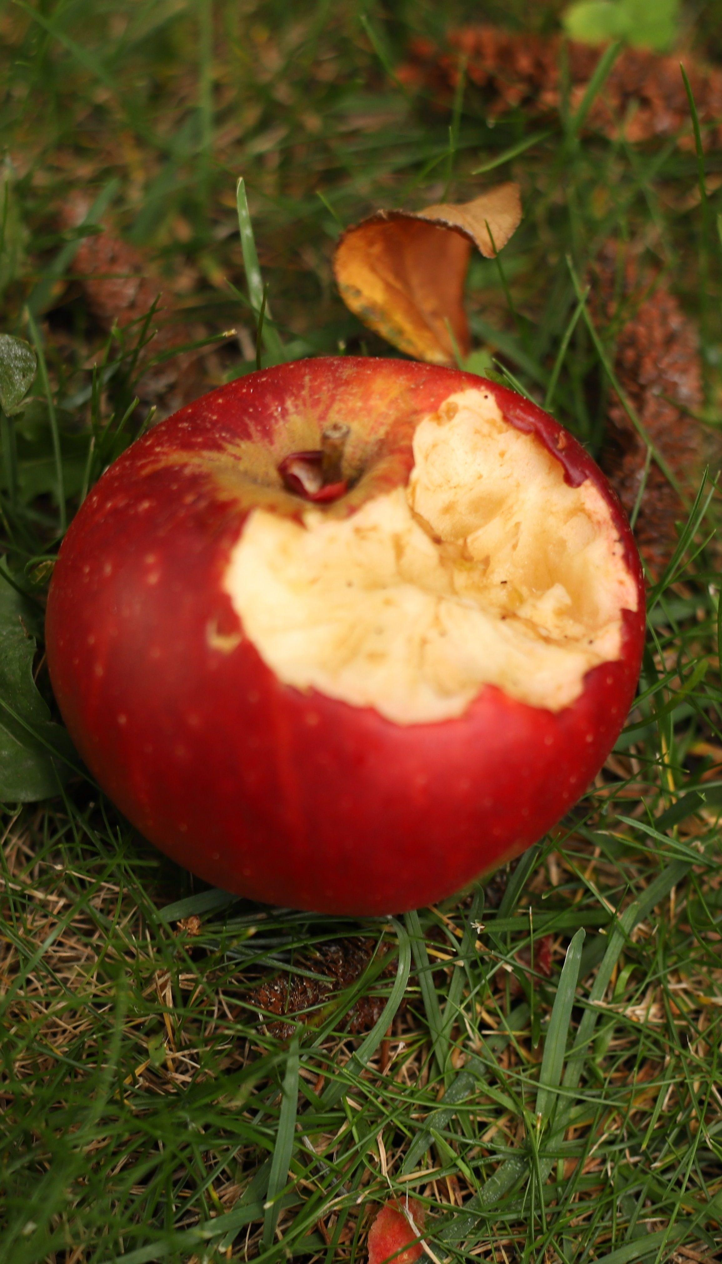 Два яблока в день защитят организм от сердечных заболеваний - ученые
