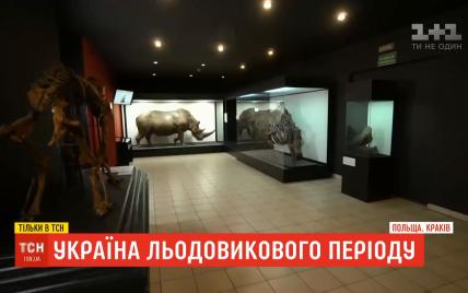 Україна льодовикового періоду: які скарби можуть бути заховані на Прикарпатті