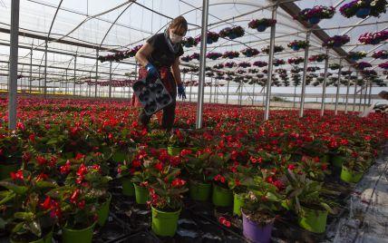 Польша нуждается во все большем количестве рабочих из Украины, но ситуация может измениться