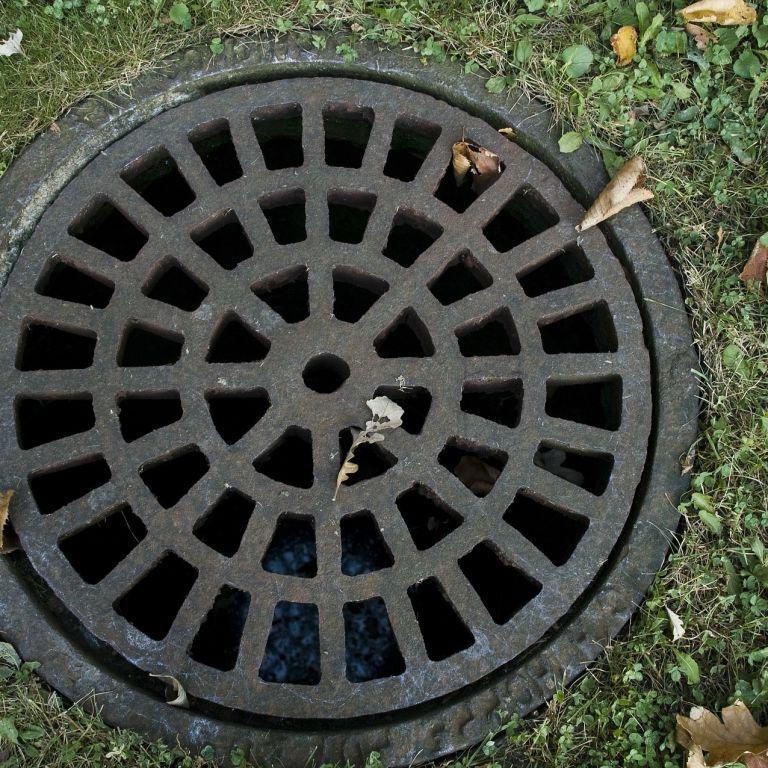 У Луганській області чоловік виявив в каналізації тіла своїх родичів