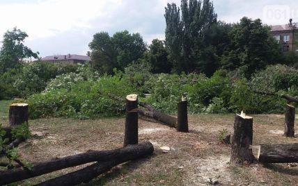Подробности трагедии в Запорожье: отрубленная ветка дерева убила глухонемую женщину