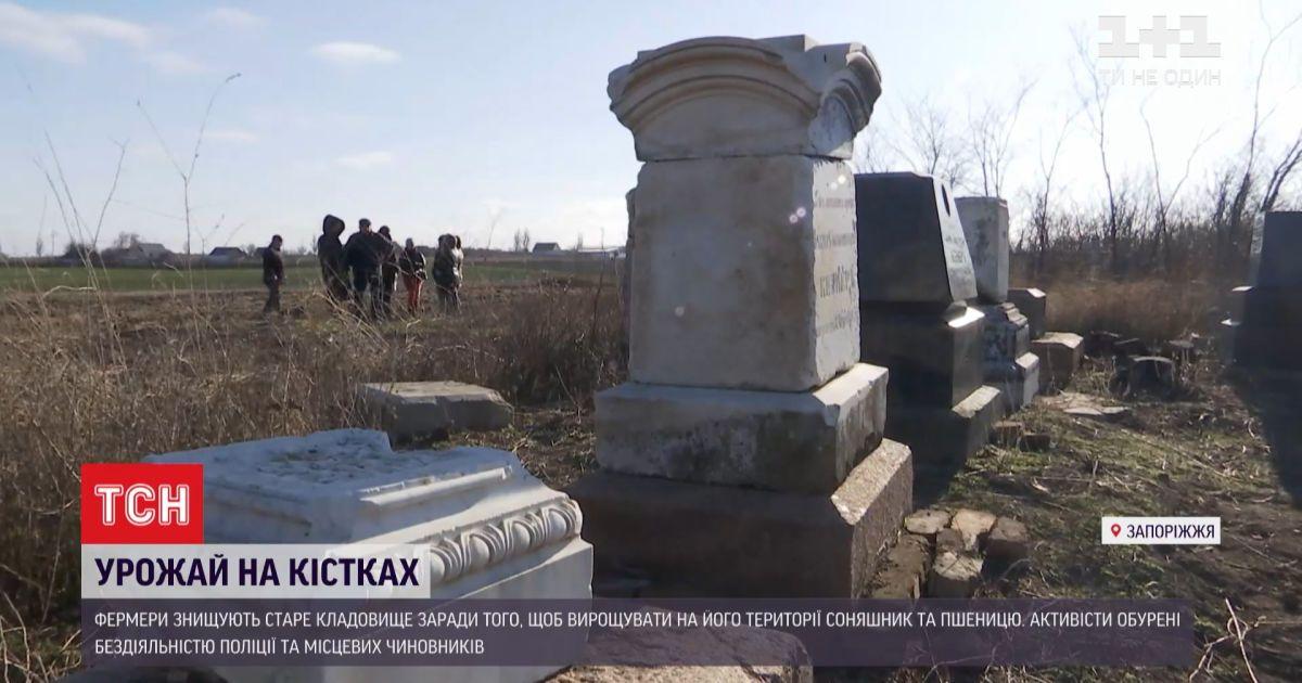 Урожай на костях: в Запорожской области фермеры уничтожают еврейское кладбище