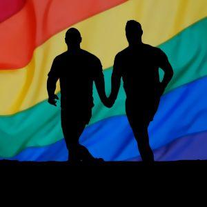 У Швейцарії схвалили одностатеві шлюби: за це проголосував парламент