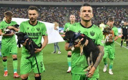 В Румынии футболисты вышли на матч с собаками на руках: зачем они это сделали